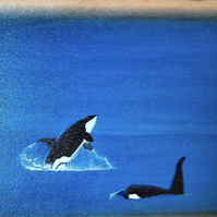 Killer Whales Mini Wooden Wall Plaque.