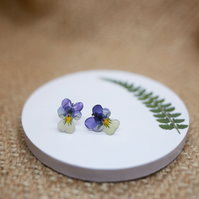 Viola Studs Earrings