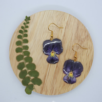 Viola Earrings, Gold Plated French Hook, Pansy Jewellery