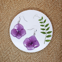 Purple Hydrangea Earrings, Sterling Silver French Hooks, Dried Flower Jewellery