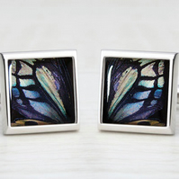 Shades of Blue & Green Butterfly Wing Print Cufflinks