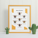Bees of Britain Print - Bees UK Print (A4)