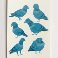 PIGEONS PRINT - blue bird illustration, postcard art, birbs