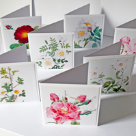 8 Vintage Roses 3 x 3 Blank Mini Note Cards Gift Tags Stationery Set