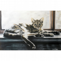 'Lily' Tabby Cat Signed Print from my Original Watercolour Paintings