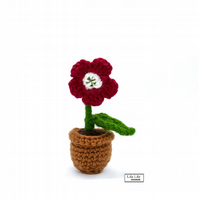Everlasting potted red flower, crocheted by Lily Lily Handmade