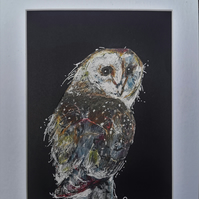Nosy animals The Owl. Seated barn owl unique, original art with mount.