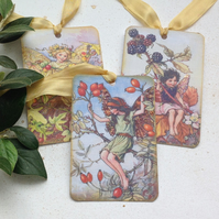 GIFT TAGS Vintage-style. Flower Fairies . 'Autumn 3 '.