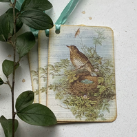 GIFT TAGS, Vintage -style. ' The  SongThrush  '( set of 3)  ..ready to ship...
