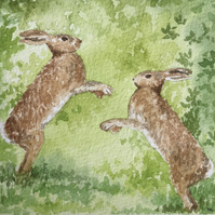 March hares on a Spring morning original watercolour