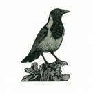 Hooded Crow two-colour linocut print