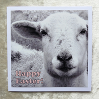 Happy Easter!  Easter card.