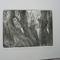 Moody drypoint etching 'Herne the Hunter III'