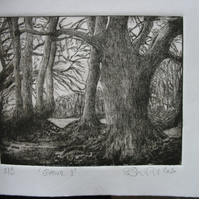 Moody drypoint etching of Exmoor birch grove