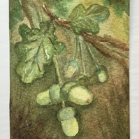 Mighty Oaks ACEO
