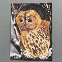 Owl Watch aceo