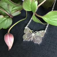 Small Silver Butterfly Necklace, (Brimstone Butterfly).