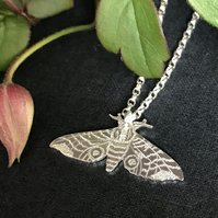 Small Silver Moth Necklace, Eyed Hawkmoth.