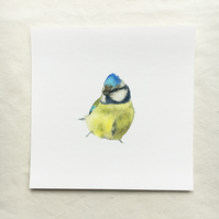 Watercolour blue tit giclée print