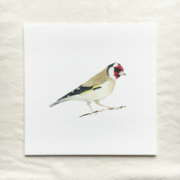 Watercolour goldfinch giclée print