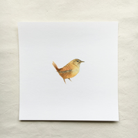Watercolour wren giclée print