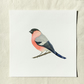 Watercolour bullfinch giclée print