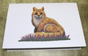 DuffleCat Greeting Cards