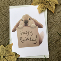 Happy Birthday Bunny Greeting Card
