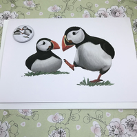 Puffins Blank Greeting Card and Mini Badge or Magnet Set