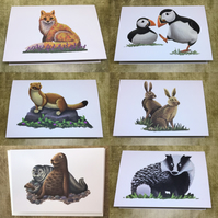 British Wildlife - set of 6 blank greeting cards
