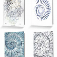 Ammonite fossild set of four blank card notelets