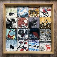 Wildlife Coasters Pick & Mix (choose any four)