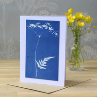 Cow Parsley Cyanotype Card No. 7