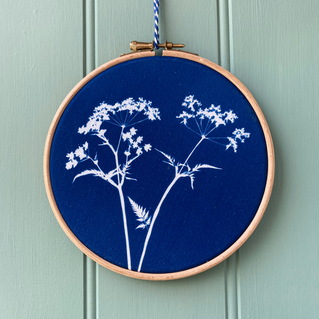 Cow Parsley Cyanotype 2 Embroidery Hoop