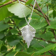 Silver Birch Necklace large