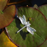 Dragonfly Brooch Large