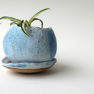 Small Pebble Planter