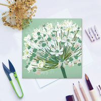 White Allium Card - Floral