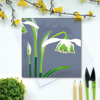 Double Snowdrop Card - Spring, birthday, for gardeners