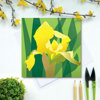 Yellow Bearded Iris card - Spring, flower, blank card