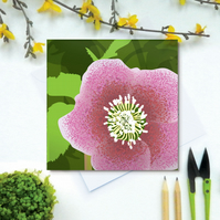 Hellebore card - Spring, flower, woodland