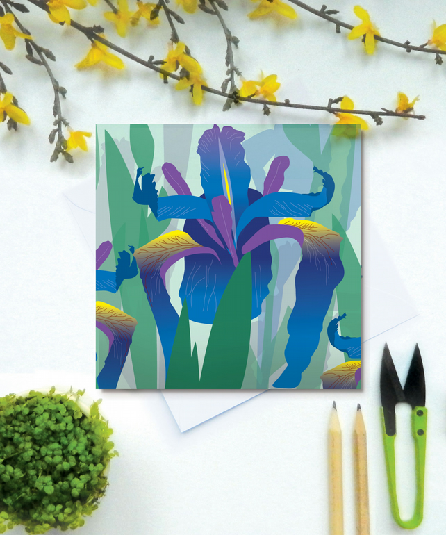 Blue Flag Iris Card - birthday, spring, Mothers Day