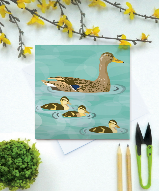 Ducks Card - Easter, birthday, Spring, farm