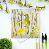 Green Finch Card - British Bird, Eco Friendly, FSC card, Blank inside