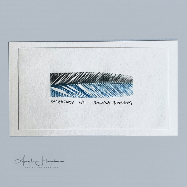 Small Original Limited Edition Etching Feather on Japanese Paper