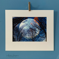 Winter Moon with Trees Fine Art Photograph