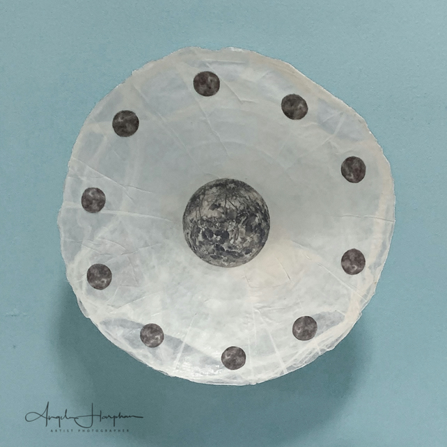 Silk Shallow Dish Wall Hanging  with  Photographic Motifs