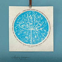 Original Circular Seedhead Linoprint with A-Z Wild Flower Roundel - Potential