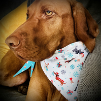 MEDIUM Reversible Dog Bandanas - Various Designs