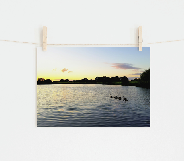 Birds at Sunset, Fine Art Photography Print, Various Sizes Available